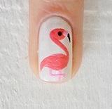 Flamingós köröm
